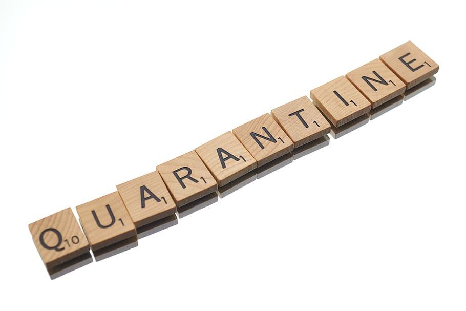 quarantine-text-disease-virus-social-message